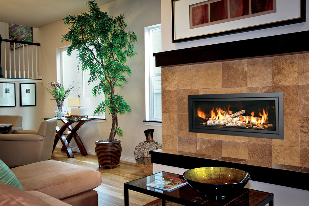 Mendota_Gas_Fireplace_ML47 (1)
